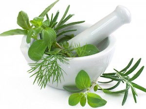 Paleo Herbs