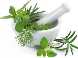 Paleo Herbs
